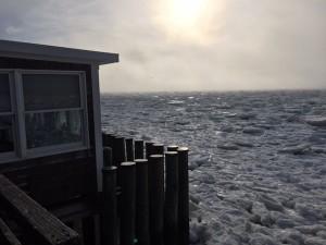 Fanizzi's Provincetown Icebergs 2015