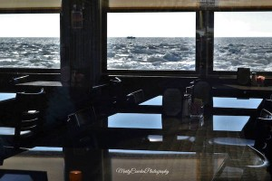 Fanizzi's Restaurant by the Sea - Provincetown Icebergs